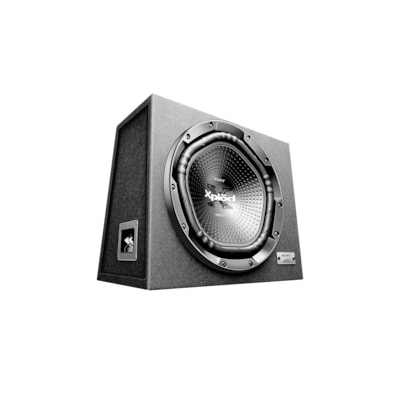 "Picture of 30cm (12"") Subwoofer with Enclosure"