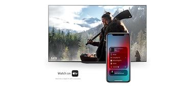 Apple AirPlay and Apple HomeKit