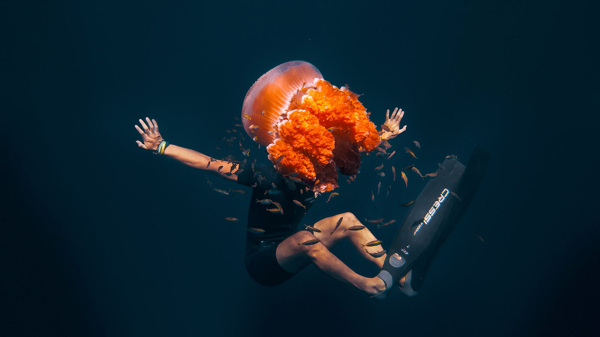 danas macijauskas sony rx100m4 a diver underwater with his face obscured by a jellyfish
