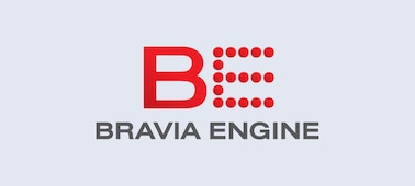 BRAVIA ENGINE logo