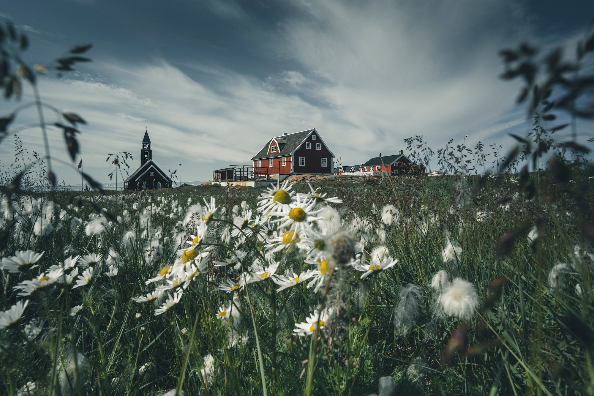dennis schmelz sony alpha 6500 house in greenland surrounded by flowers